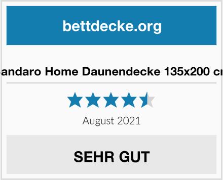 no name Sandaro Home Daunendecke 135x200 cm Test