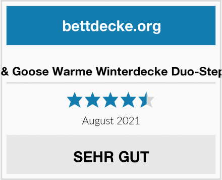 Duck & Goose Warme Winterdecke Duo-Steppbett Test