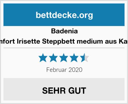 Badenia Bettcomfort Irisette Steppbett medium aus Kamelhaar Test